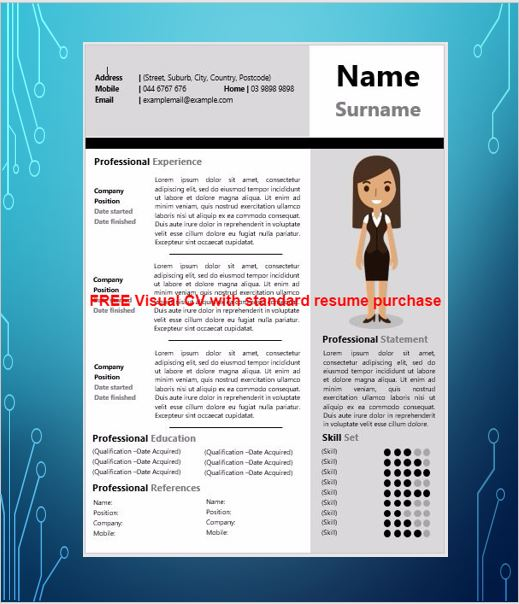 Visual Cv Samples Best Visual Resumes Professional Visual