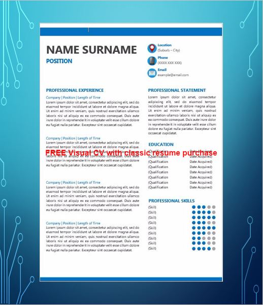 visual cv sles best visual resumes professional visual